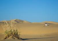 Пески «Аккумсагыз»